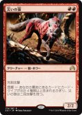 災いの狼/Scourge Wolf [SOI-JPR]