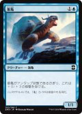 【FOIL】象亀/Giant Tortoise [EMA-JPC]