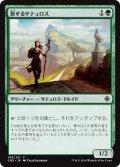 【FOIL】旅するサテュロス/Voyaging Satyr [CN2-JPC]
