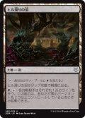 ヒル溜りの沼/Leechridden Swamp [NvO-JPU]