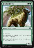 【FOIL】高木背の踏みつけ/Arborback Stomper [KLD-JPU]