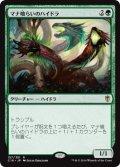 マナ喰らいのハイドラ/Managorger Hydra [C16-JPR]