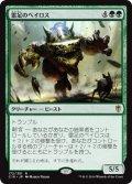 雷足のベイロス/Thunderfoot Baloth [C16-JPR]