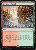 カープルーザンの森/Karplusan Forest [C16-JPR]