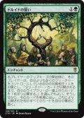 ドルイドの誓い/Oath of Druids [C16-JPR]