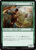 僧帽地帯のドルイド/Druid of the Cowl [AER-JPC]