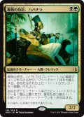 毒物の侍臣、ハパチラ/Hapatra, Vizier of Poisons [AKH-JPR]