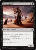【FOIL】呪われた者の王/Lord of the Accursed [AKH-JPU]