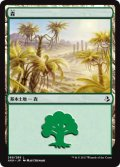 【FOIL】森/Forest #269 [AKH-JPB]