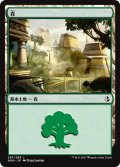 【FOIL】森/Forest #267 [AKH-JPB]