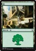【FOIL】森/Forest #268 [AKH-JPB]