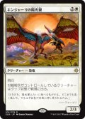 キンジャーリの陽光翼/Kinjalli's Sunwing [XLN-JPR]