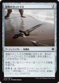 【FOIL】海賊のカットラス/Pirate's Cutlass [XLN-JPC]