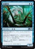 【FOIL】波濤牝馬/Surge Mare [M19-JPU]