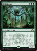 【FOIL】孵卵場の蜘蛛/Hatchery Spider [GRN-JPR]