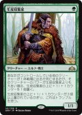 【FOIL】生皮収集家/Pelt Collector [GRN-JPR]