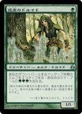 遺産のドルイド/Heritage Druid [MOR-JPU]