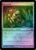【FOIL】銅の甲殻/Copper Carapace [MBS-JPC]