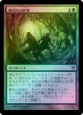 【FOIL】輝刃の探索/Quest for the Gemblades [ZEN-JPU]