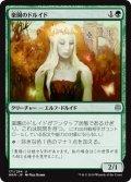 【FOIL】楽園のドルイド/Paradise Druid [WAR-JPU]