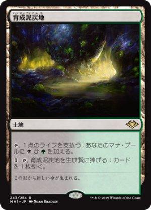 画像1: 【FOIL】育成泥炭地/Nurturing Peatland [MH1-JPR]