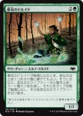 春花のドルイド/Springbloom Druid [MH1-JPC]