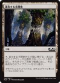 【FOIL】進化する未開地/Evolving Wilds [M20-JPC]