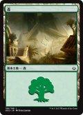 【FOIL】森/Forest #198 [HOU-JPB]