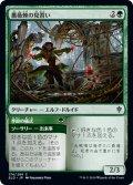 【FOIL】薔薇棘の見習い/Rosethorn Acolyte [ELD-JPC]