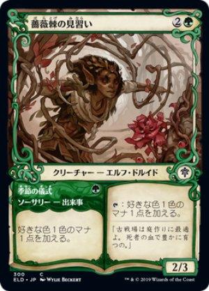 画像1: 【FOIL】【Alternate Frame】薔薇棘の見習い/Rosethorn Acolyte [ELD-JPC]