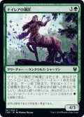 【FOIL】ナイレアの猟匠/Nylea's Huntmaster [THB-JPC]