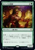 セテッサの勇者/Setessan Champion [THB-JPR]