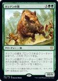 ネシアンの猪/Nessian Boar [THB-JPR]