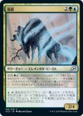 【FOIL】領獣/Parcelbeast [IKO-JPU]