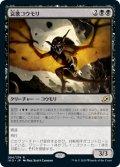 哀歌コウモリ/Dirge Bat [IKO-JPR]