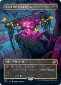 【Alternate Frame】インダサのトライオーム/Indatha Triome [IKO-JPR]