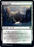 【FOIL】森林の地割れ/Woodland Chasm [KHM-JPC]