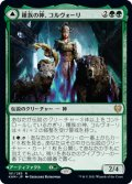 【FOIL】種族の神、コルヴォーリ/Kolvori, God of Kinship [KHM-JPR]