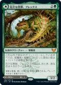 【FOIL】厄介な害獣、ブレックス/Blex, Vexing Pest [STX-JPM]