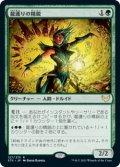 龍護りの精鋭/Dragonsguard Elite [STX-JPR]