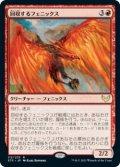 回収するフェニックス/Retriever Phoenix [STX-JPR]