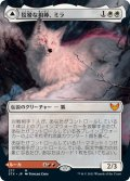 【Alternate Frames】狡猾な相棒、ミラ/Mila, Crafty Companion [STX-JPM]
