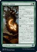 ドルイド・クラス/Druid Class [AFR-JPU]
