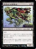 蛙投げの旗騎士/Frogtosser Banneret [MOR-JPC]