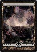 沼/Swamp #241 [ZEN-JPB]