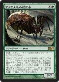 アラクナスの紡ぎ手/Arachnus Spinner [M12-JPR]