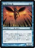 かき鳴らし鳥/Thrummingbird [SOM-JPU]