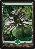 森/Forest #249 [ZEN-JPB]