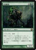 【FOIL】化膿獣/Putrefax [SOM-JPR]